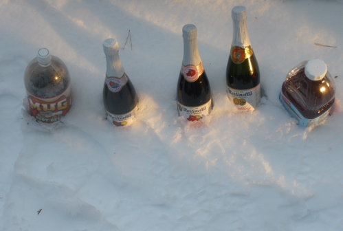 Our Christmas cooler