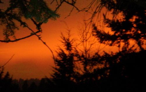 Sunset2feb08