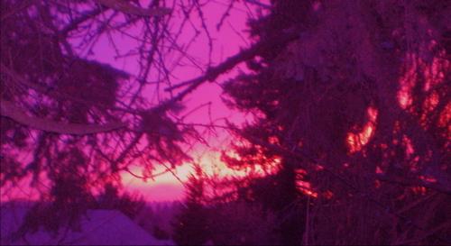 Sunsetfeb08